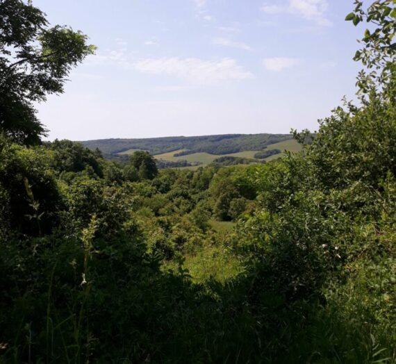 Zselic legszebb völgye – Zselickisfalud